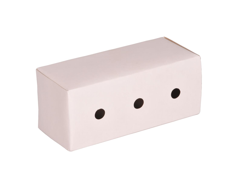 Caixa de Papelão Transporte Peq. com 100 un